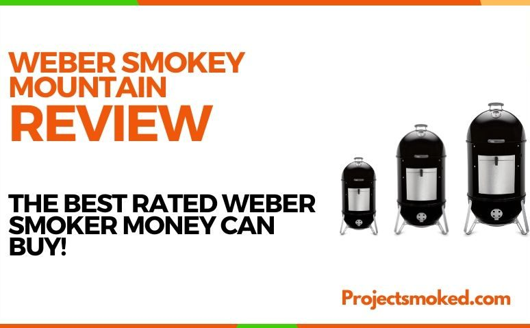Weber Smokey Mountain Review